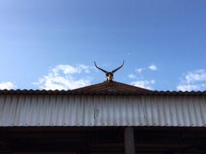 Bullara Bull Bar